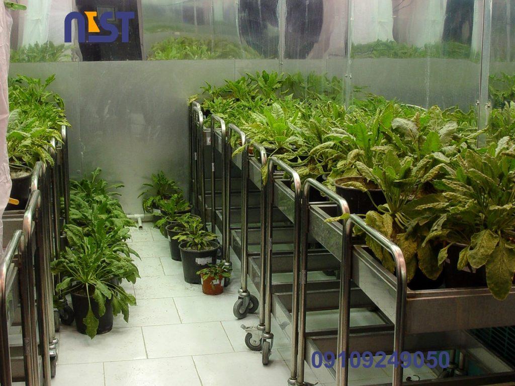 اتاق رشد گیاه