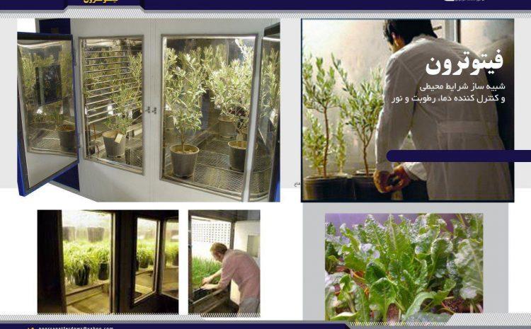 کاربرد کشت بافت گیاهی در حوزه ی زیست فناوری چیست؟